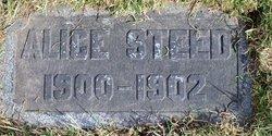 Alice Steed