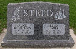 Alice <i>Goodfellow</i> Steed