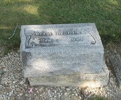 George J Hendricks