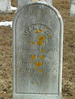 Jane C. <i>Hamilton</i> Guptill