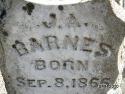 J. A. Barnes