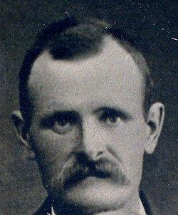 Alfred Dahlberg