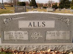 Sarah Elizabeth Liz <i>Price</i> Alls