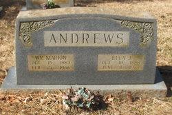 William Marion Andrews