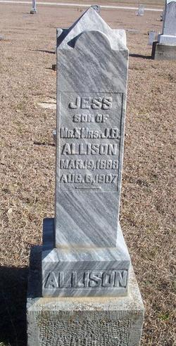 Jess Allison