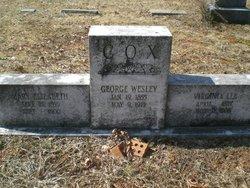 George Wesley Cox