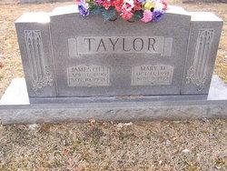 James Ott Taylor