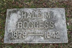 Hale Matthew Boggess