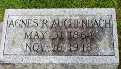 Agnes R Auchenbach
