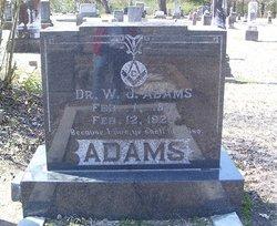 Dr W J Adams