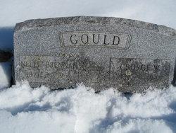 George W Gould