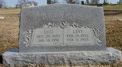 Levi Blevins