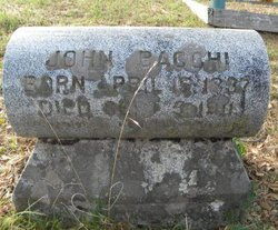 John Bacchi