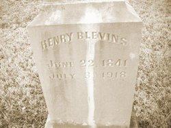 Henry Blevins