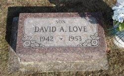David Allen Love