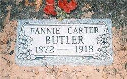 Sarah E. Francis Fannie <i>Carter</i> Butler
