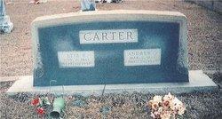 Albert Andrew Jackson Carter