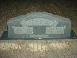 Allie B Cook