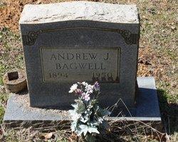 Andrew J. Bagwell