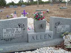 Virginia Sue Sue <i>Basham</i> Allen