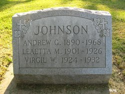 Andrew G Johnson