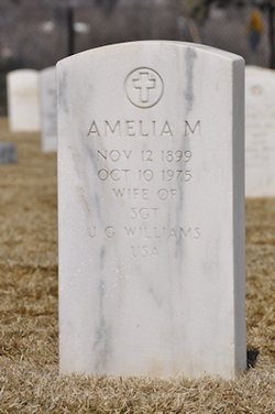 Amelia M Williams