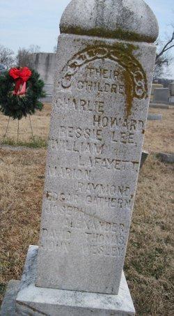 Elizabeth Ann Eliza <i>Presley</i> Barnett