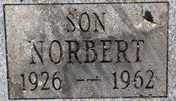 Norbert G Scherr