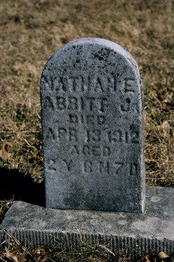 Nathan E. Abbitt, Jr