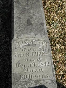 Elizabeth Jane <i>Johnson</i> Burns