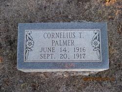 Cornelius T Palmer