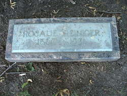 Rosalie Eliza Rose <i>Reiniger</i> Willson