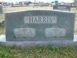 Tilden Joseph Harris