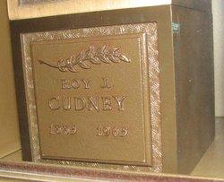 Roy James Cudney