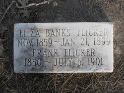 Eliza Leona <i>Banks</i> Flicker