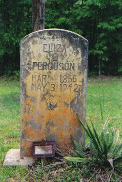 Eliza Emily <i>Dyer</i> Ferguson
