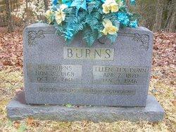 Braxton Bragg Burns