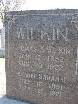 Sarah Jane <i>Woods</i> Wilkin