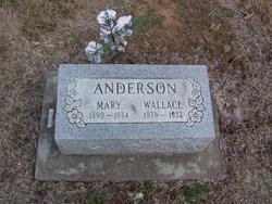 Mary Irene <i>Durkee</i> Anderson
