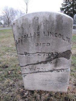 Appollas Lincoln