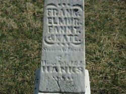 Fanny Hanks