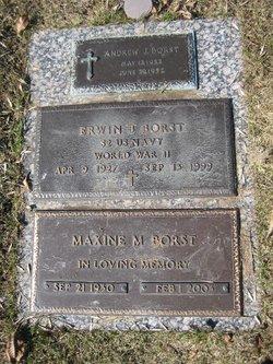 Erwin B Borst