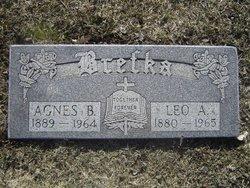 Agnes B Brefka