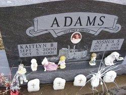 Kaitlyn Brooke Adams