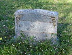 Eliza Jane <i>Gillespie</i> Brieden