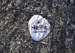 Nellie Avery