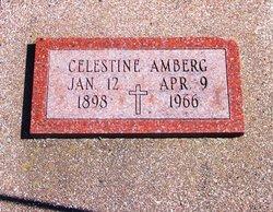 Celestine Mary <i>Springer</i> Amberg