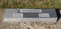 Ellen E. Anderson
