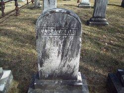 Laura V Hall