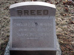 Amelia Eliza <i>Bosworth</i> Breed